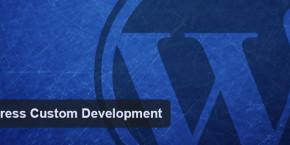 wp-custom-development